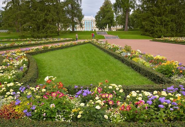 Puszkin sankt petersburg rosja09032020 kwiatowy trawnik w parku katarzyny