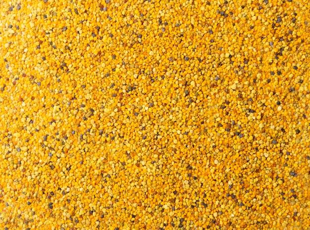 Pyłek pszczeli teksturowanej tło