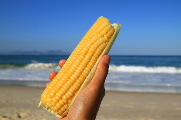 Pyszna kukurydza gotowana na parze na plaży