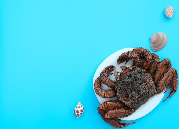 Pyszny krab gotowany na parze leży na białym talerzu na niebieskim tle z muszelkami