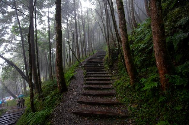 Qilan maguao shenmu w hrabstwie yilan na tajwanie jest znaną atrakcją turystyczną