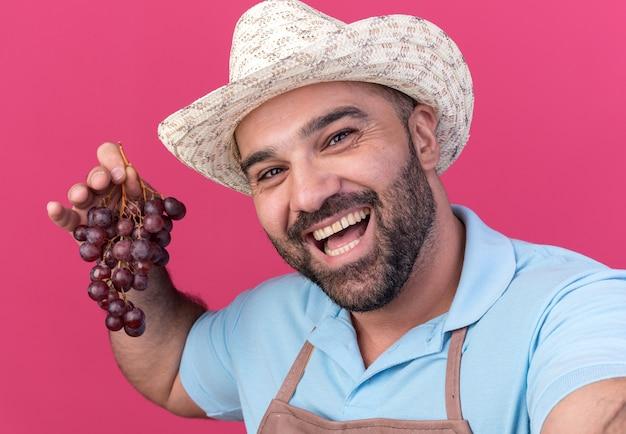 Radosny dorosły kaukaski mężczyzna ogrodnik w kapeluszu ogrodniczym, trzymający kiść winogron i patrzący na kamerę