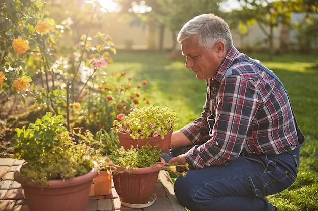 Radosny wiekowy ogrodnik uśmiechający się i trzymający doniczkę z kwitnącą rośliną doniczkową podczas pracy w ogrodzie