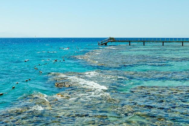 Rafa koralowa na morzu czerwonym ejlat, wrzesień 2018