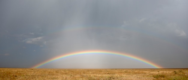 Rainbow w parku narodowym serengeti