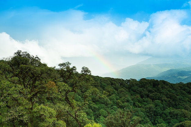 Rainbows w viewpoint doi inthanon.