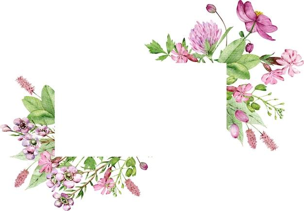 Rama akwarela polne kwiaty na białym tle z miejsca na kopię