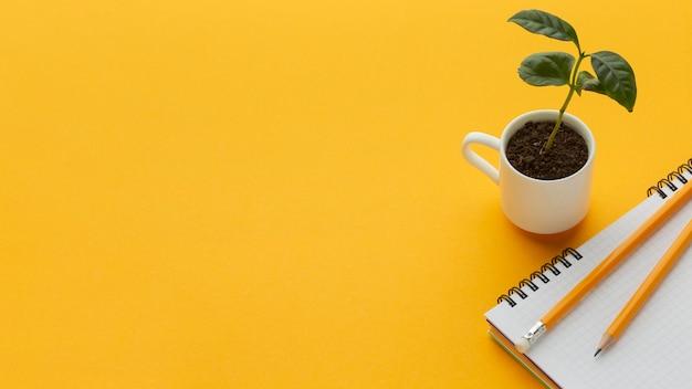 Rama do roślin i notebooka pod wysokim kątem