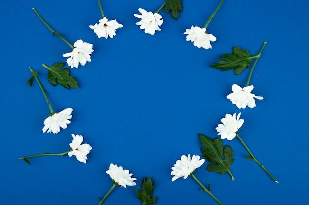 Rama kwiatów. układ białych kwiatów na niebieskim tle. koncepcja piękna przyrody