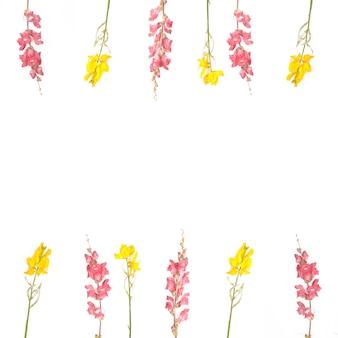 Rama kwiatów