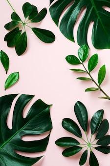 Rama liść tropikalny palmy na różowym tle z miejsca kopiowania. leżał płasko. widok z góry. koncepcja natura lato lub wiosna.