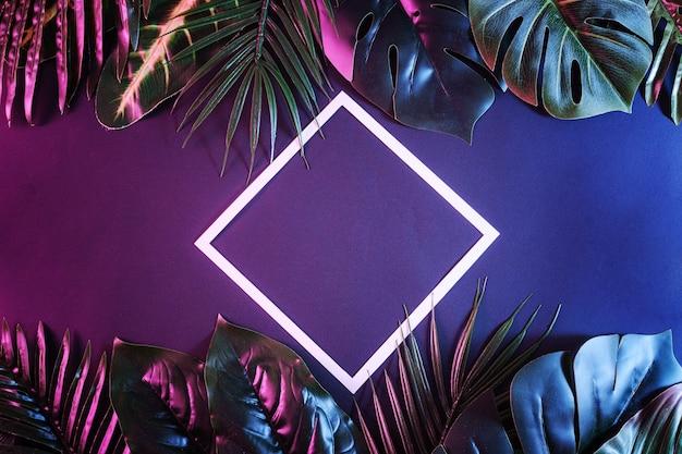 Rama romb z białą obwódką i kopią przestrzeni z liśćmi modi tropikalnych palm i roślin w tle