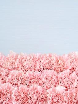 Rama różowy kwiat goździków