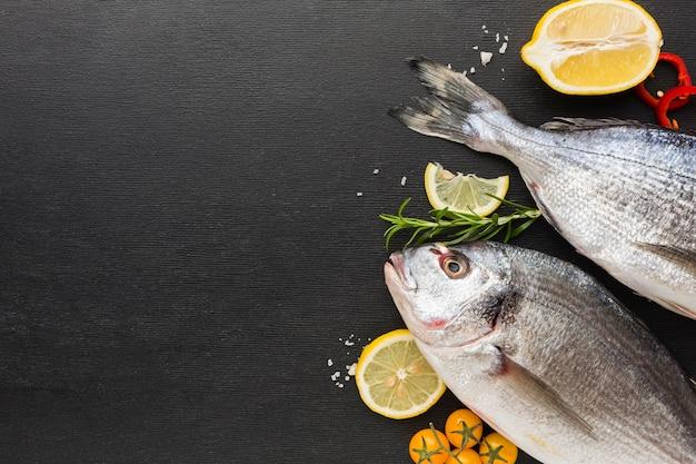 Rama ryb widok z góry z miejsca na kopię