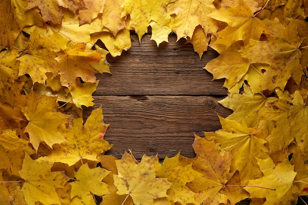 Rama składa się z kolorowych liści jesienią na drewnianym