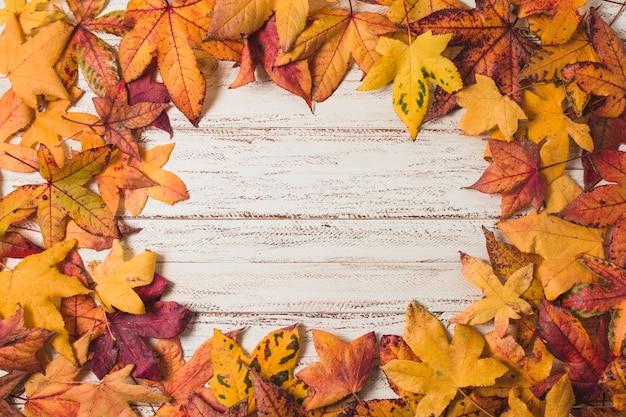 Rama świeckich liści jesienią