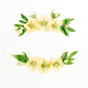 Rama wieniec wykonana z żółtego kwiatu ciemiernika i zielonego liścia na białym tle