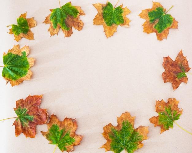 Rama wykonana z jesiennych liści klonu z miejsca na kopię.