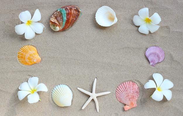 Rama wykonana z kwiatów plumerii z rozgwiazdami i muszlami na piasku. letnia koncepcja tła