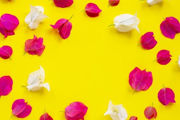 Rama wykonana z pięknych czerwonych i białych kwiatów bugenwilli