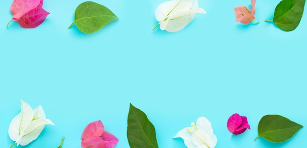 Rama wykonana z pięknych czerwonych, różowych i białych kwiatów bugenwilli na niebieskim tle. skopiuj miejsce