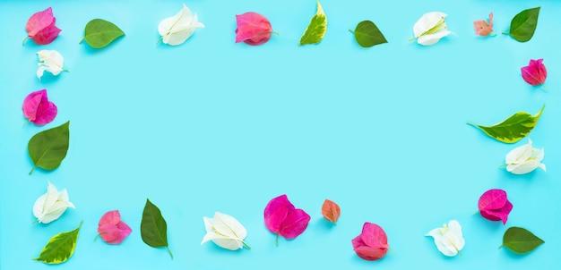 Rama wykonana z pięknych czerwonych, różowych i białych kwiatów bugenwilli na niebieskim tle. widok z góry