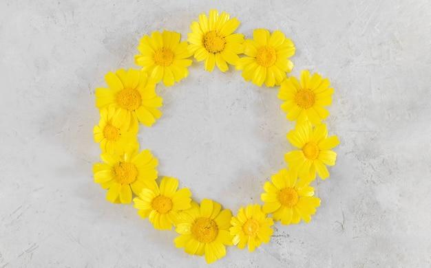 Rama wykonana z żółtych rumianków lub stokrotek na szarym tle. płaski układanie, widok z góry i przestrzeń do kopiowania