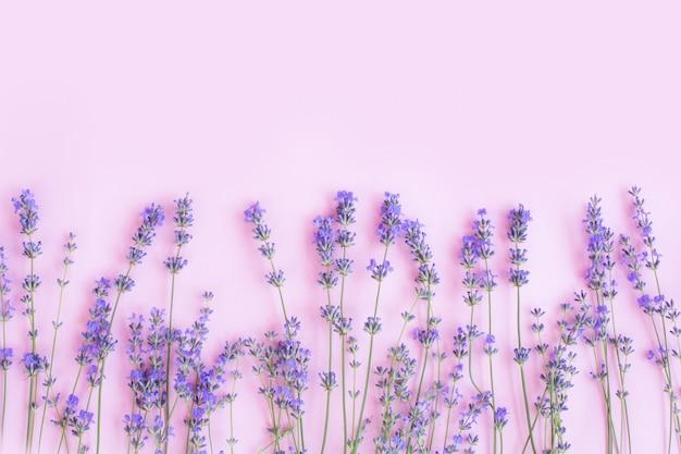 Rama wykonana ze świeżych kwiatów lawendy na płasko,