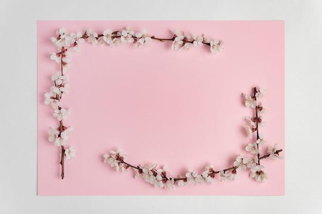 Rama z białych wiosennych kwiatów na gałęzi drzewa na różowym tle. szablon. zasłona. makieta.