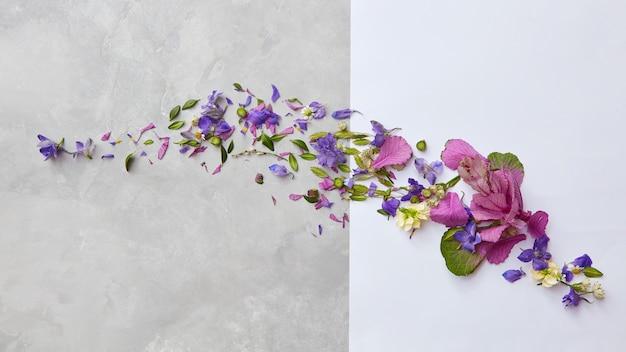 Rama z kwiatów i liści na betonowym tle z miejscem na tekst, lay flat