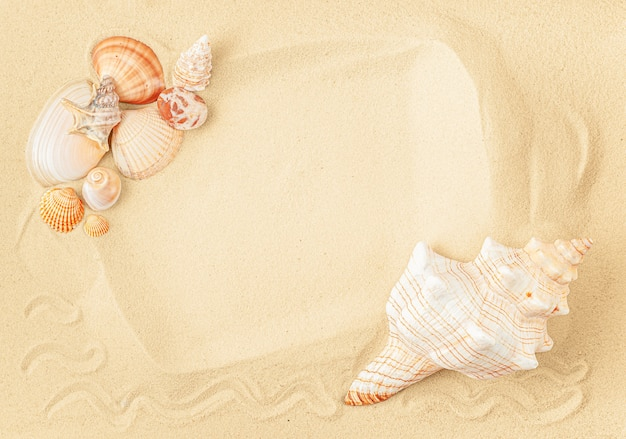 Rama z muszelek na żółtym piasku. koncepcja wakacji letnich, płaskie lay