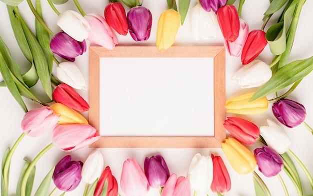 Rama z pięknymi kolorowymi tulipanami na białym tle.