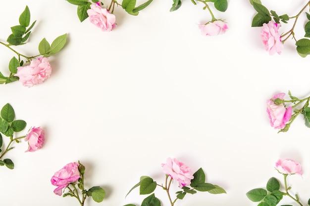 Rama z róż na białym tle
