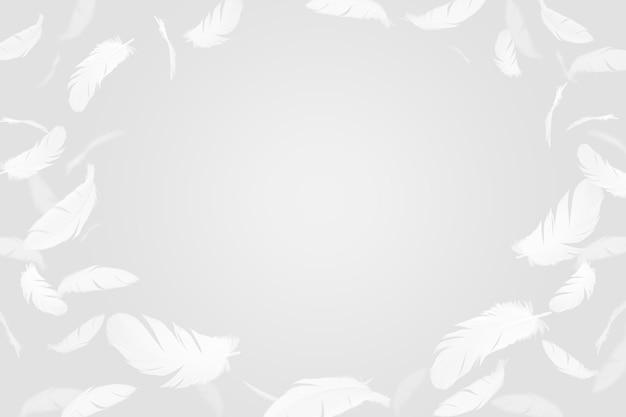 Ramka białe pióra na szarym tle.