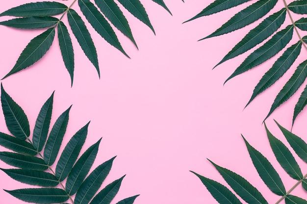 Ramka liści na różowo