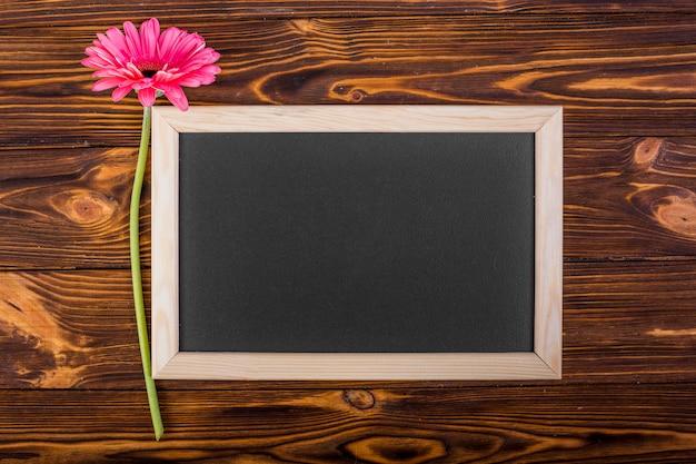 Ramka tablica z różowym gerbera