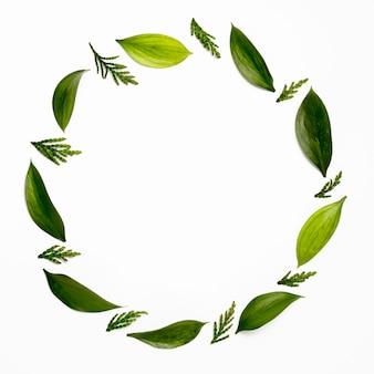 Ramka widok z góry z zielonymi liśćmi