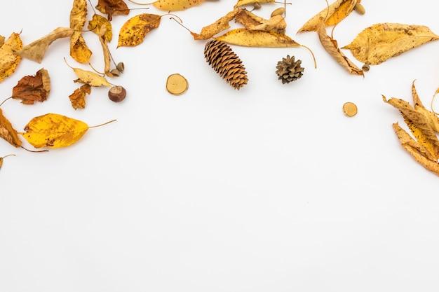 Ramka widokowa z liści i szyszki