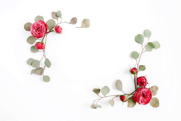 Ramka z czerwonych róż pąki kwiatowe i gałęzie eukaliptusa na białym tle