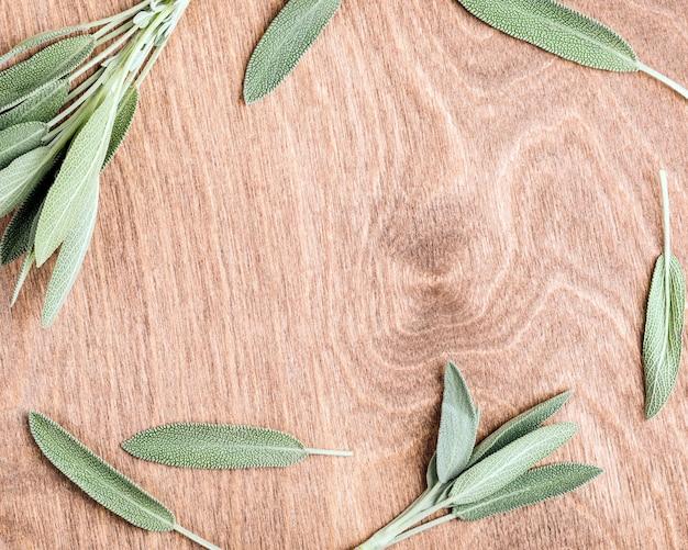 Ramka z liści szałwii w tle warzywnym z miejscem na kopię pośrodku