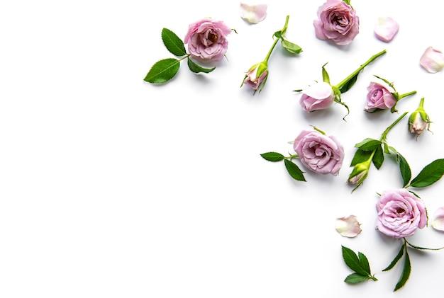 Ramy z róż na białym tle. leżał na płasko.
