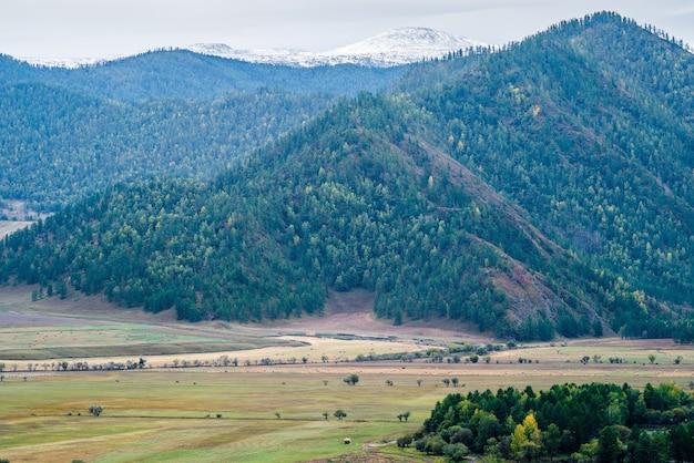 Rano górski krajobraz wiejski rosja góry ałtaj