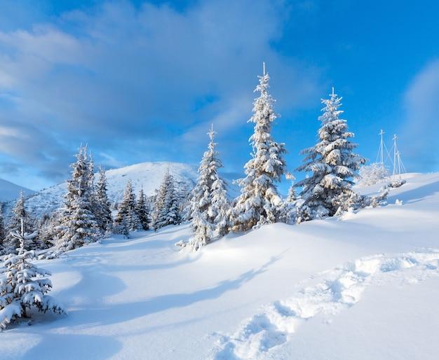 Rano zimowy krajobraz górski z jodłami i śladami na zboczu.