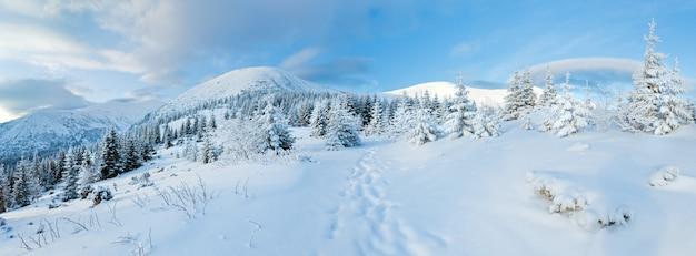 Rano zimowy krajobraz górski z jodłowego lasu na zboczu.