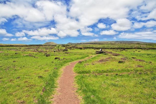 Rapa nui. petroglify na wyspie wielkanocnej