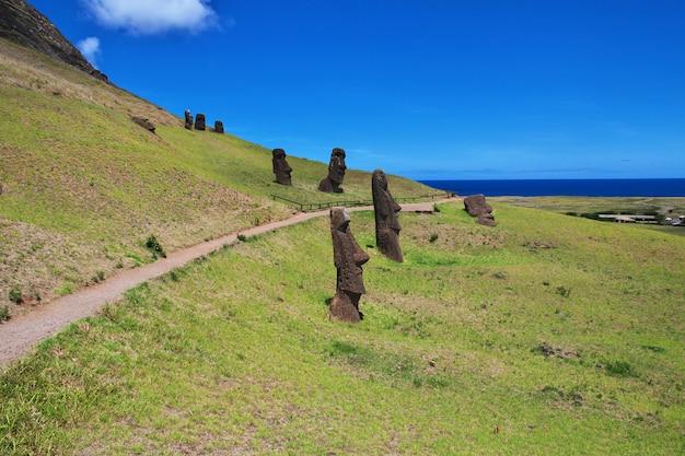 Rapa nui. statua moai w rano raraku na wyspie wielkanocnej, chile