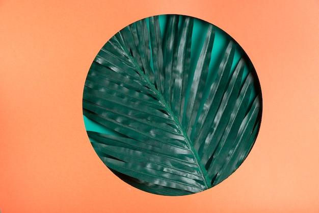 Realistyczny liść wewnątrz papierowego koła