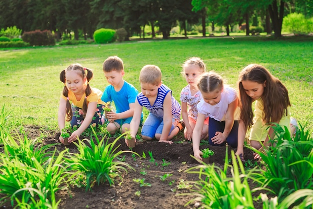 Ręce dzieci sadzą młode drzewa na czarnej ziemi razem jako świat