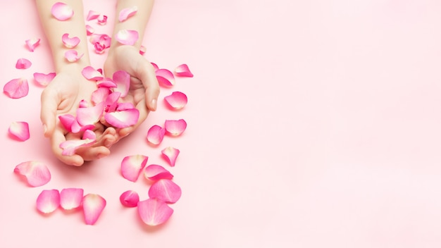 Ręce kobiety trzymają kwiaty róży na różowym tle. cienki nadgarstek i naturalny manicure. kosmetyki do delikatnej pielęgnacji skóry. kosmetyki z płatków naturalnych, przeciwzmarszczkowa pielęgnacja dłoni.