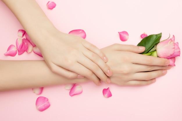 Ręce kobiety trzymają kwiaty róży na różowym tle. kosmetyki do delikatnej pielęgnacji skóry. kosmetyki z płatków naturalnych, przeciwzmarszczkowa pielęgnacja dłoni.